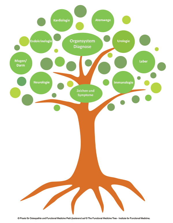 Functional Medicine Baum